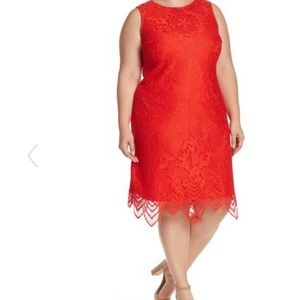 Sharagano Scallop Lace Tank Dress Plus size 20W